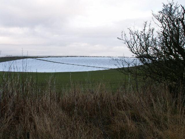 Plastic fields by Allanhill