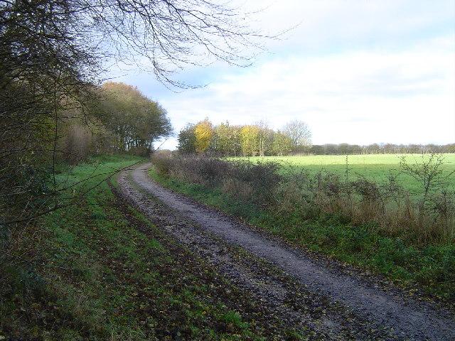 Sandridge: Bridleway