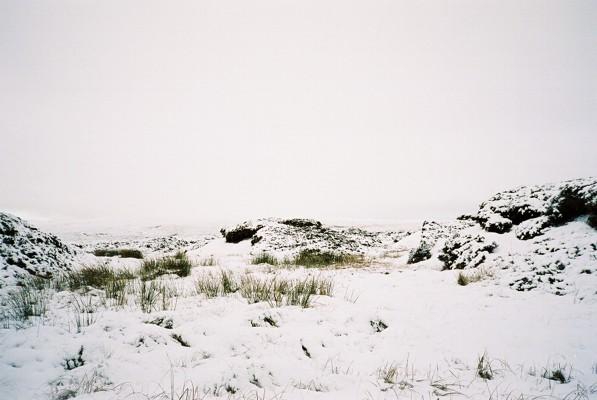 Peat bog and heather moorland