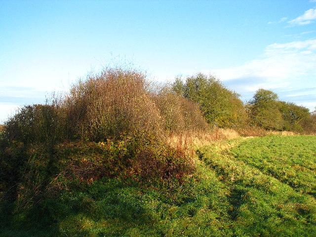 Ingoldsby Round Hills.