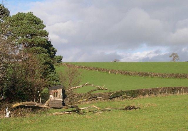 Valley near Sortridge Farm