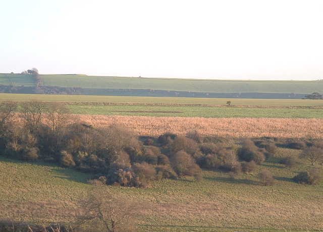 Downland Hillside