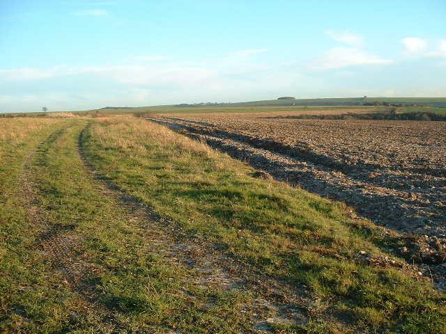 Downland Fields