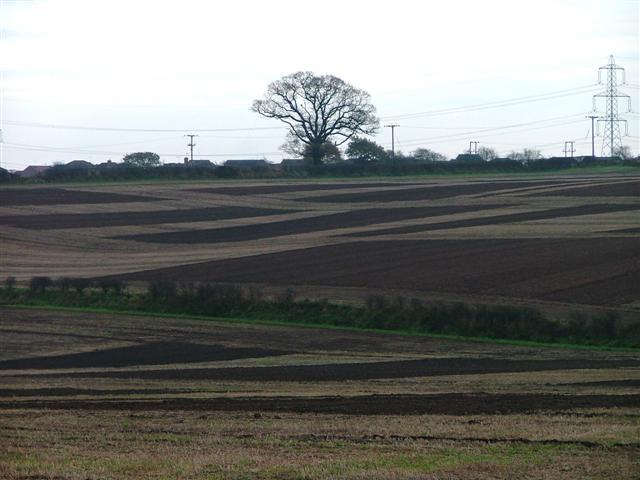 Ploughed Fields. Lidgett