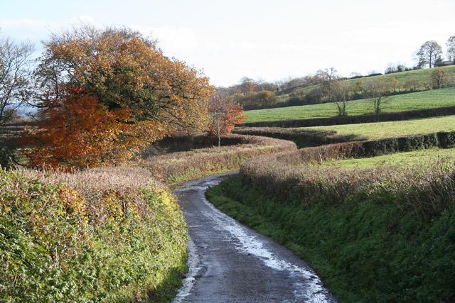 Halberton: between Middle Curham and Crosslands