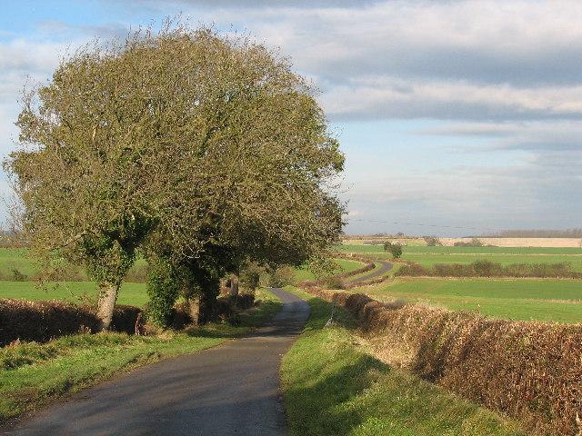 Walcot Lane.