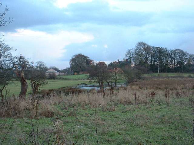 Ponds at Winmarleigh