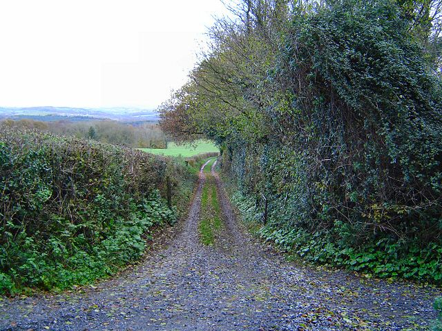 Footpath near Seale Hayne.