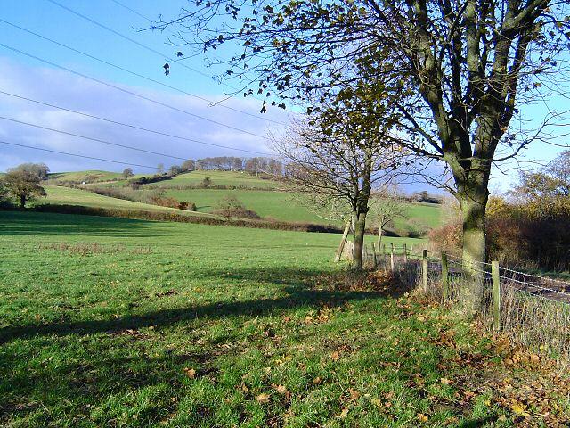 West of Newton Abbot