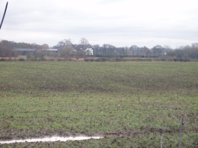 Looking NW towards Holford Hall from Ascol Drive