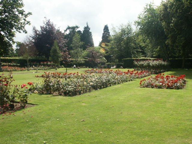 Rose garden, Earlham Cemetery