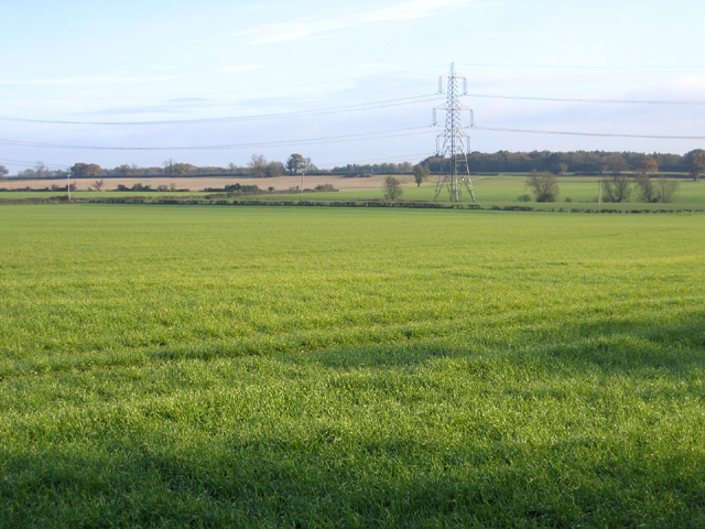 Farmland north of Upton, Peterborough