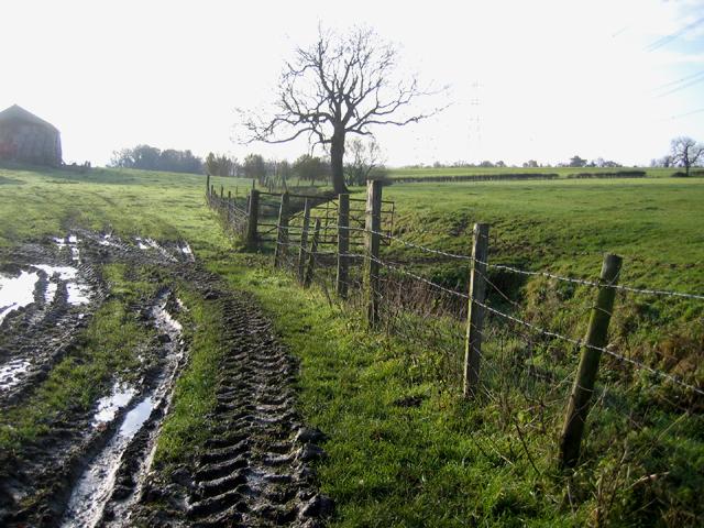Pasture behind Model Farm, Upton, Peterborough