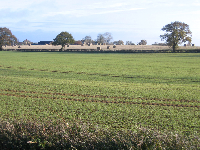 Farmland, Helpston Heath, Peterborough