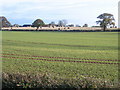 TF1102 : Farmland, Helpston Heath, Peterborough by Rodney Burton