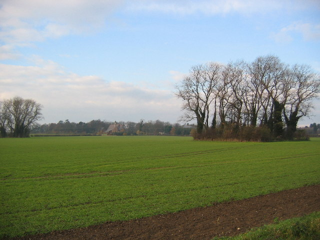 Farmland - Willerby Low Road