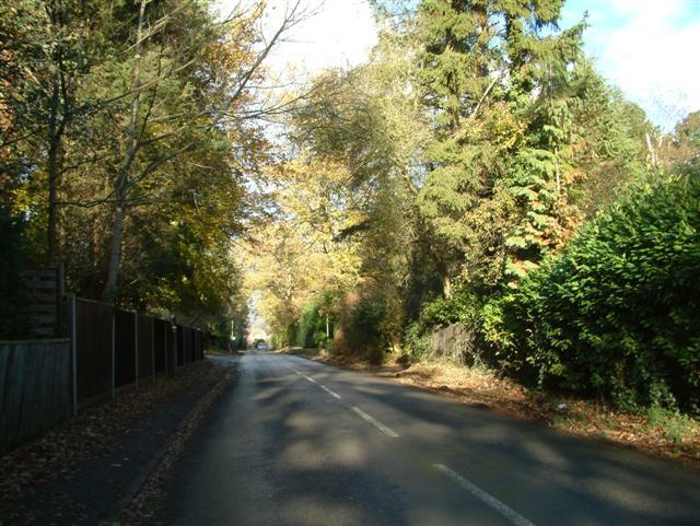 Harpsden Way