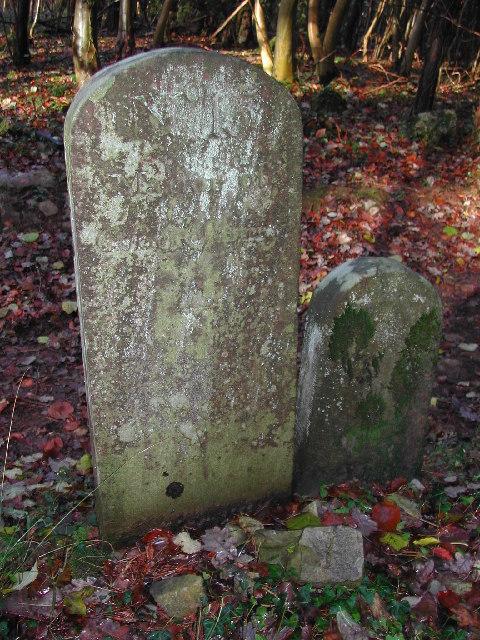 King's Wood - Boundary Stones