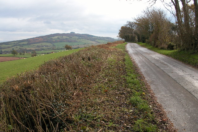 May Hill viewed from Linton Hill