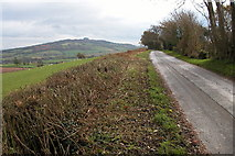 SO6624 : May Hill viewed from Linton Hill by Philip Halling
