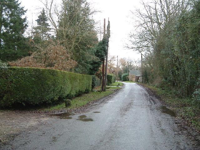 Drayton Beauchamp - Looking S.E. near Lower Farm