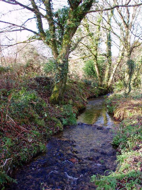 Stream near Georgia bridge