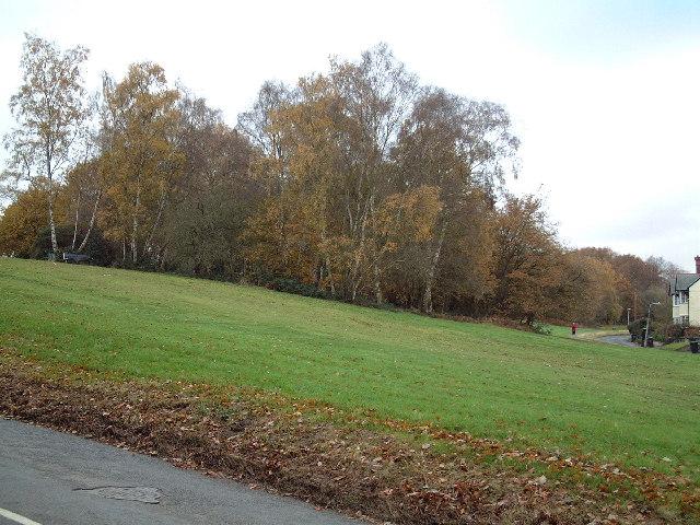 Goldhill Common