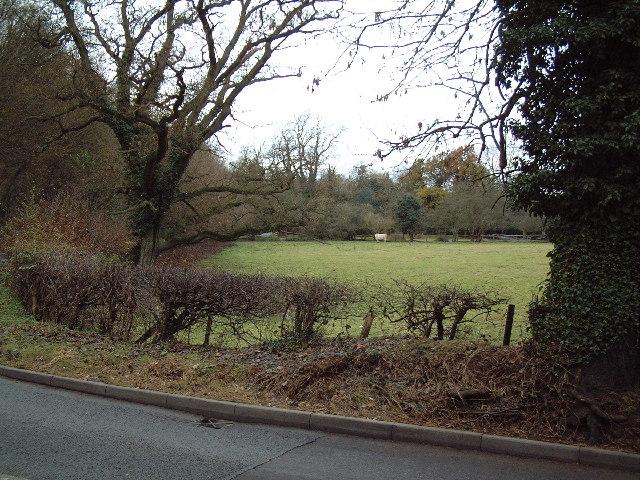 Field near Dean Wood