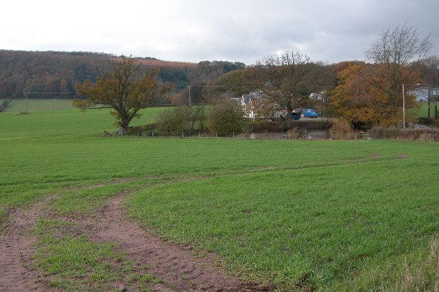 Laine's Farm
