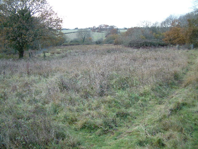 Castle Hill, Cranborne, Dorset