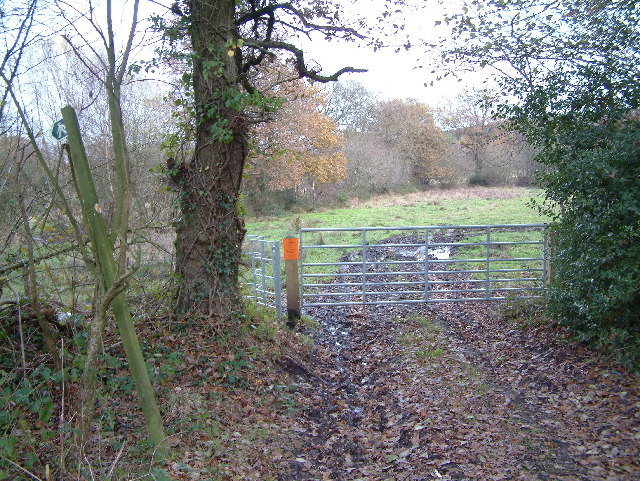 Public Footpath, north of Gotham, Dorset