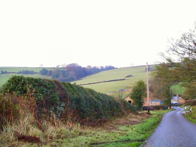 Lindway Lane