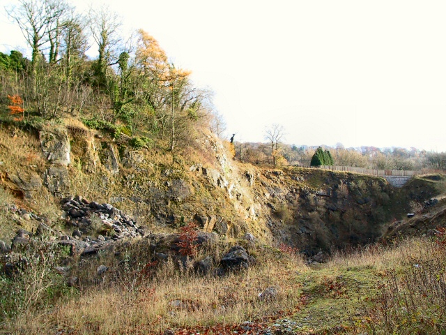 Hockley Quarry, Fall Hill