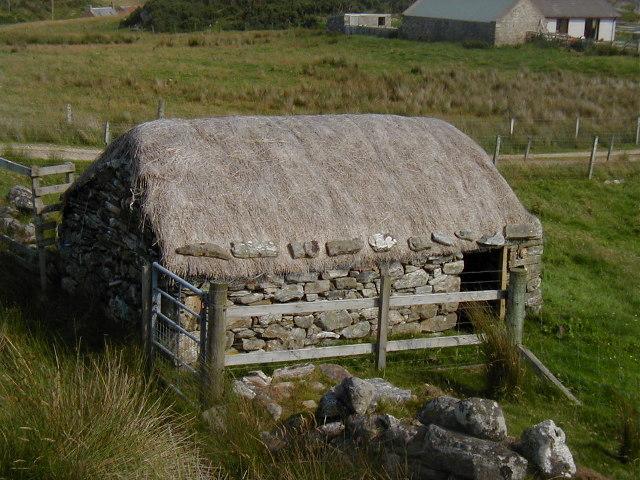 Shelter near Strathy