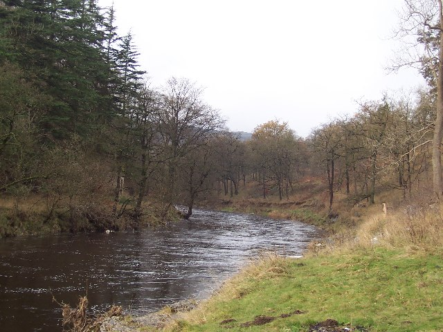 River Wharfe in Grass Wood