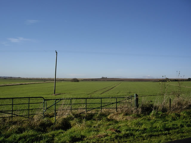 Fields west of Bridgetts Lane