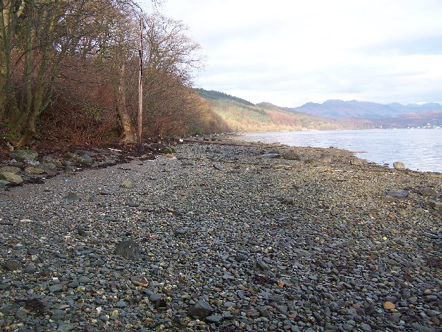 Gare Loch, shoreline at Loch-na-brae