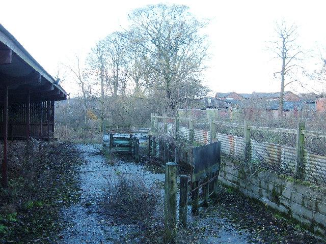 Sheep pens, derelict urban farm, Heywood