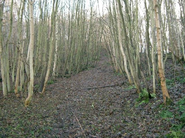 Shawhill Plantation