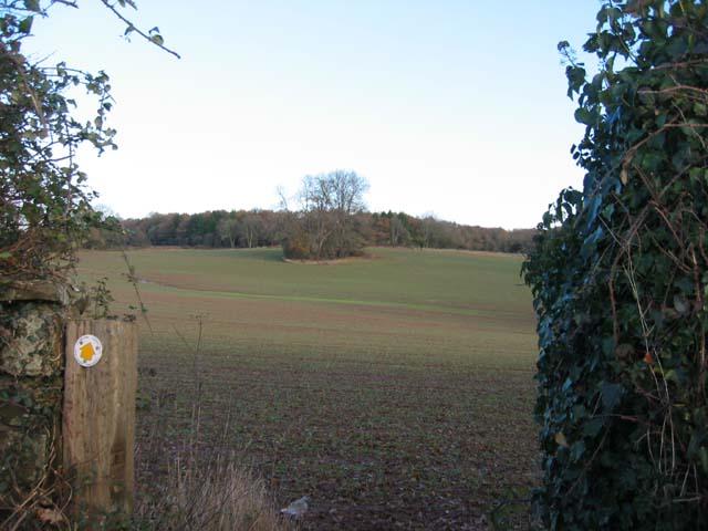 Fields near Cefn Mably