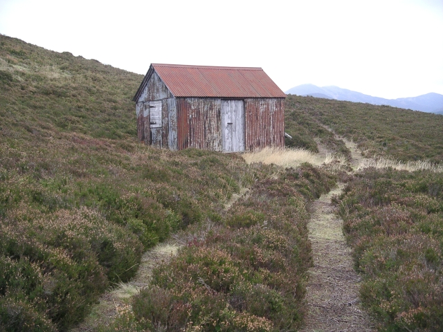 Hut and heather, Creag Dhubh
