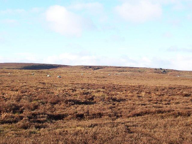 Wolf Crags and Stock Beck Moor