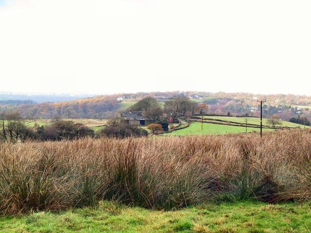 Farm at Bollinhurst