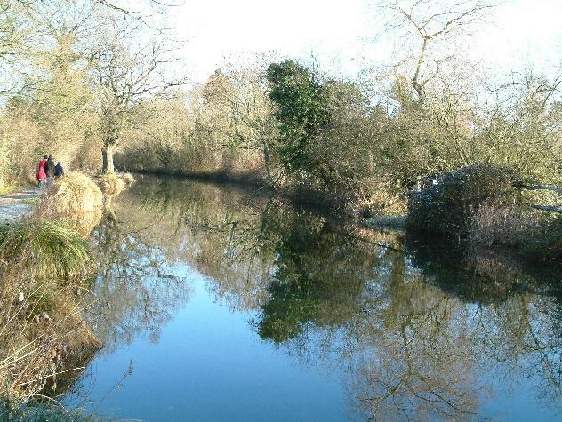 Basingstoke Canal near Odiham