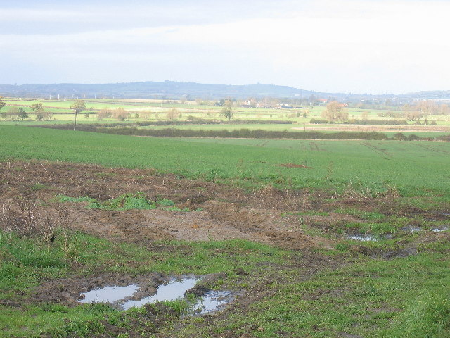 Looking north from Whaddon Hill Farm