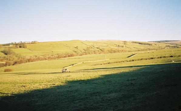 Pastures above the South Tyne