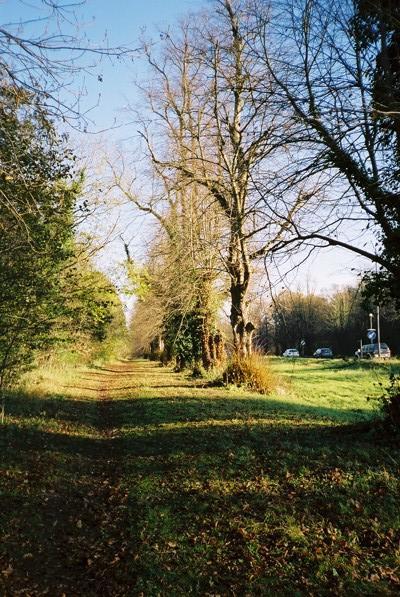 A4, Maidenhead Thicket