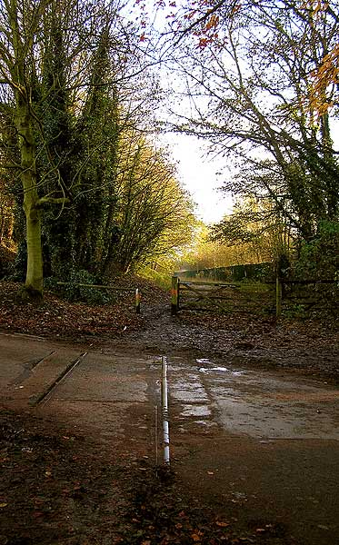Rails of abandoned colliery railway embedded in road in Shipley Country Park