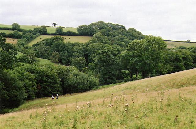 Cruwys Morchard: Dart valley