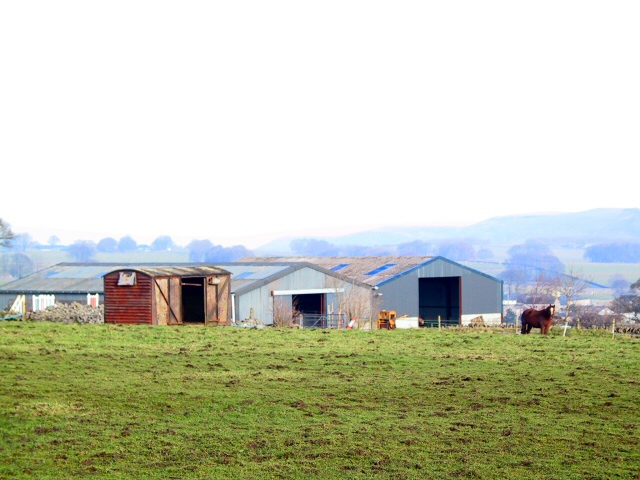 Barns at Summer Cross